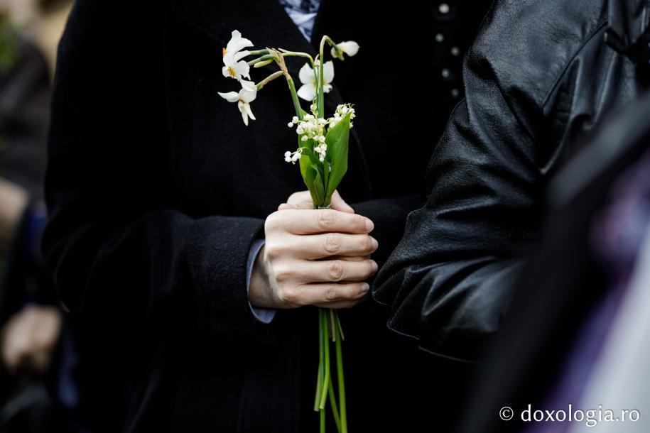 Stâlpări și flori / Foto: Oana Nechifor